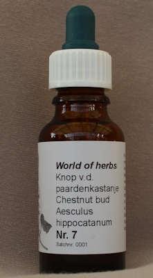 NR. 07  KNOP VAN DE KASTANJE / CHESTNUT BUD / AESCULUS HIPPO  20 ml druppels