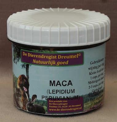 MACA   (LEPIDIUM PERUVIANUM)