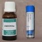 Cimicifuga D6 20 ml/80 korrel